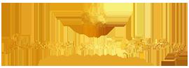 Success-Soul Living-logo